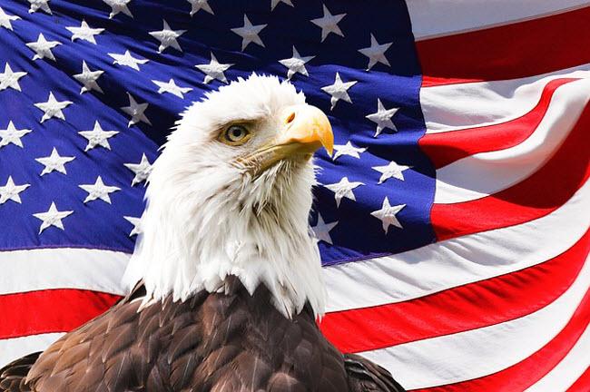 крупнейшие компании США - иллюстрация в виде белоголового орлана на фоне флага США