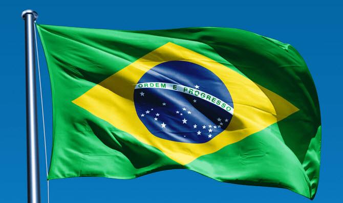 крупнейшие компании Бразилии - заставка в виде флага