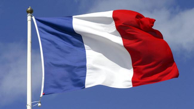 крупнейшие компании Франции на фоне национального флага