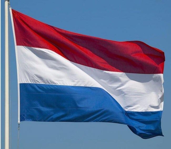 крупнейшие компании Нидерландов - флаг Голландии (Нидерландов) для фона
