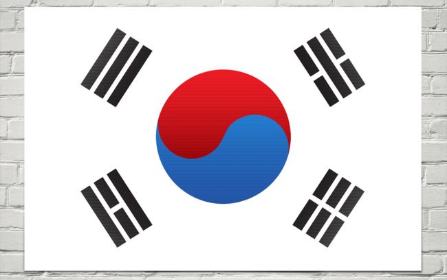 флаг Южной Кореи, висящий на кирпичной стене